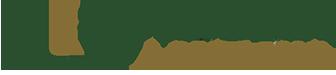 staluciainc-logo